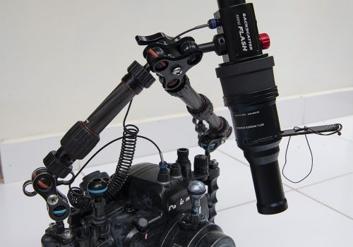 Backscatter mini flash and snoot underwater rig